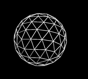 放散虫のシミュレーション